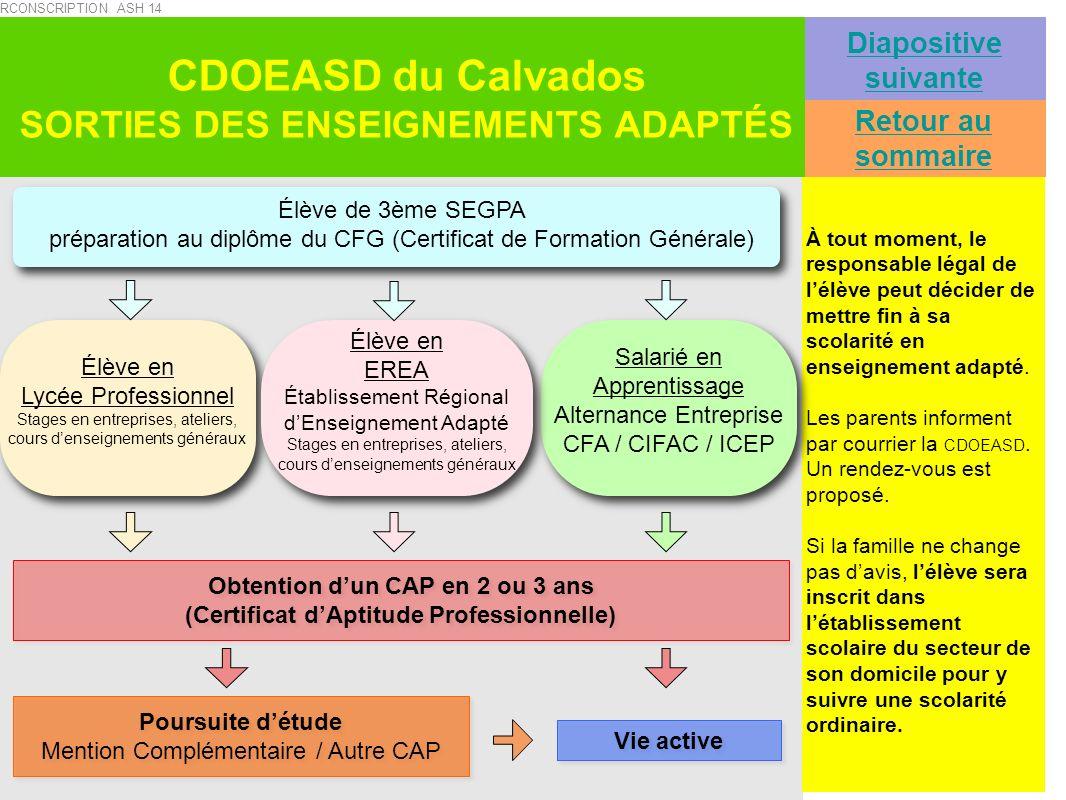 Retour au sommaire Diapositive suivante CDOEASD du Calvados SORTIES DES ENSEIGNEMENTS ADAPTÉS À tout moment, le responsable légal de lélève peut décid