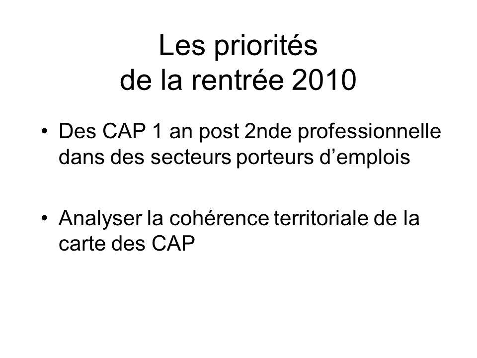 Les priorités de la rentrée 2010 Des CAP 1 an post 2nde professionnelle dans des secteurs porteurs demplois Analyser la cohérence territoriale de la carte des CAP