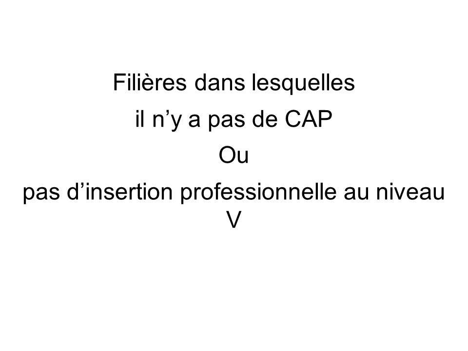 Filières dans lesquelles il ny a pas de CAP Ou pas dinsertion professionnelle au niveau V