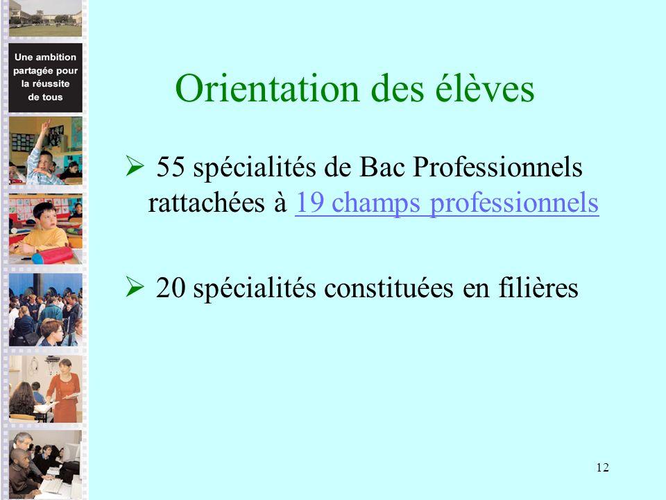 12 Orientation des élèves 55 spécialités de Bac Professionnels rattachées à 19 champs professionnels19 champs professionnels 20 spécialités constituées en filières