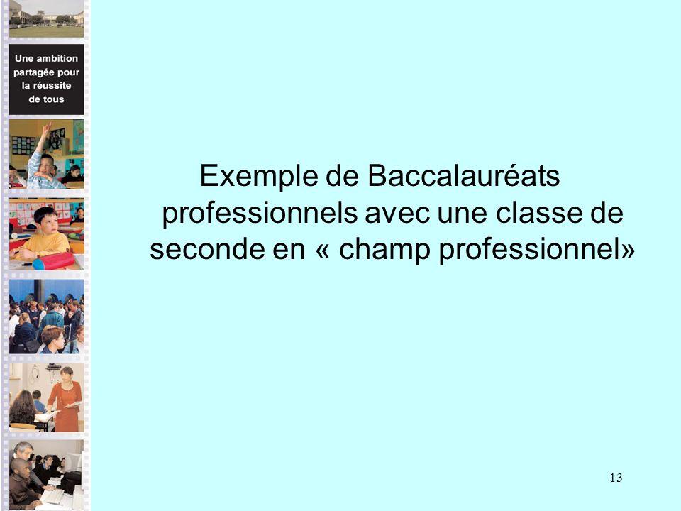 13 Exemple de Baccalauréats professionnels avec une classe de seconde en « champ professionnel»