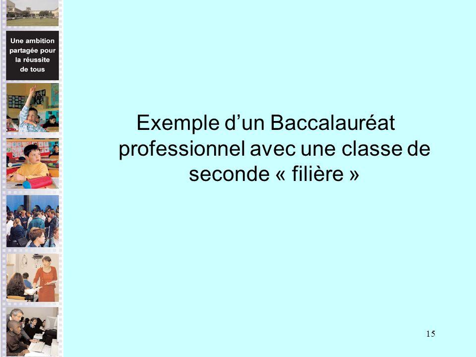 15 Exemple dun Baccalauréat professionnel avec une classe de seconde « filière »