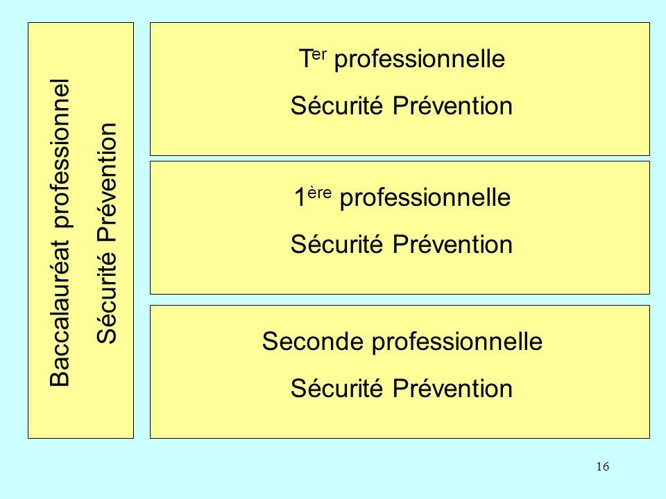 16 Seconde professionnelle Sécurité Prévention 1 ère professionnelle Sécurité Prévention T er professionnelle Sécurité Prévention Baccalauréat professionnel Sécurité Prévention