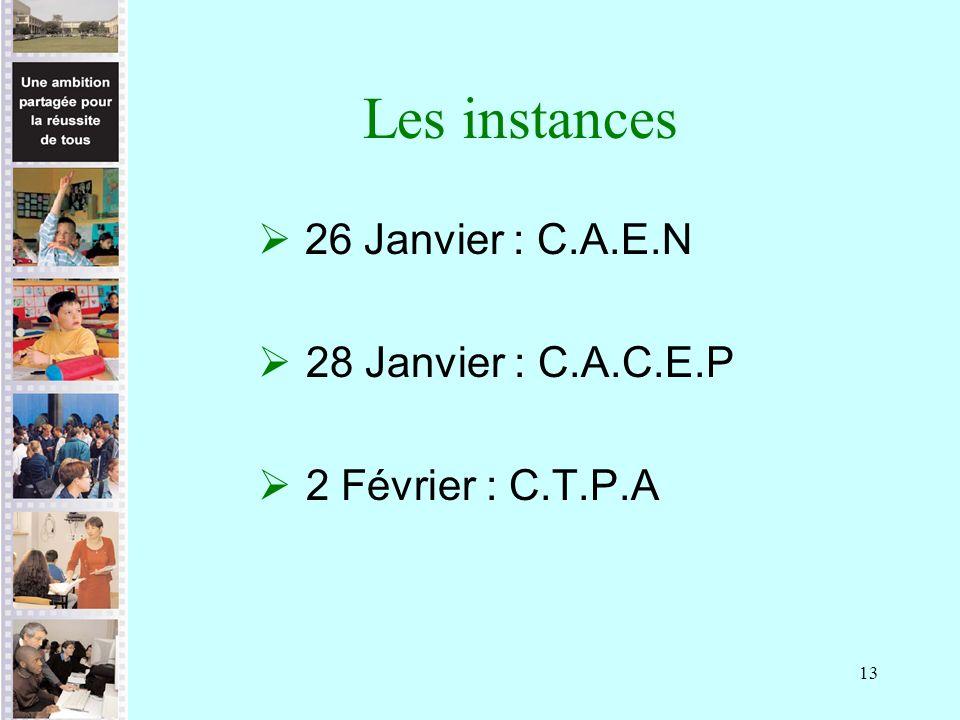 13 Les instances 26 Janvier : C.A.E.N 28 Janvier : C.A.C.E.P 2 Février : C.T.P.A