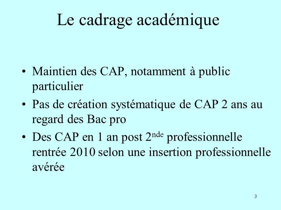 3 Maintien des CAP, notamment à public particulier Pas de création systématique de CAP 2 ans au regard des Bac pro Des CAP en 1 an post 2 nde professi