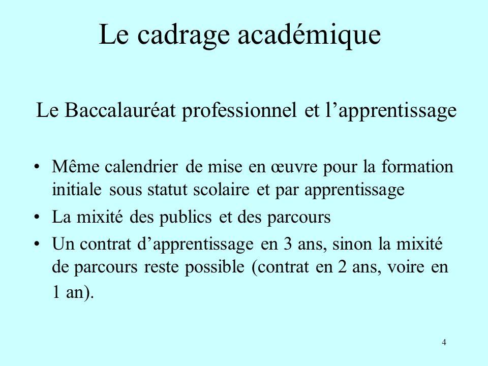 4 Le Baccalauréat professionnel et lapprentissage Même calendrier de mise en œuvre pour la formation initiale sous statut scolaire et par apprentissag