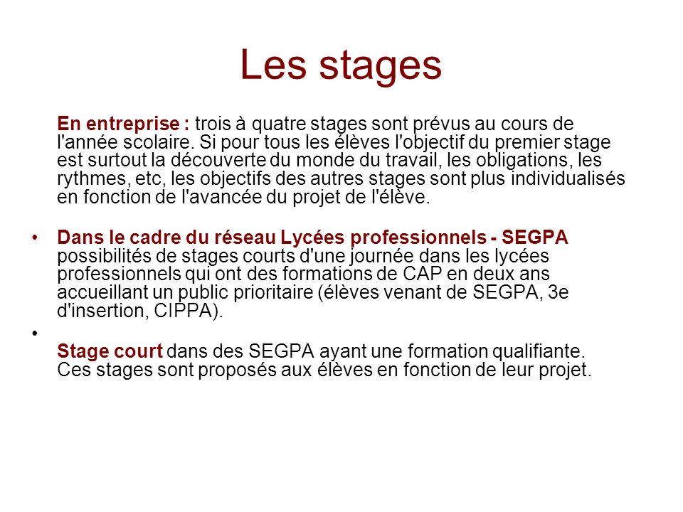 Les stages En entreprise : trois à quatre stages sont prévus au cours de l'année scolaire. Si pour tous les élèves l'objectif du premier stage est sur
