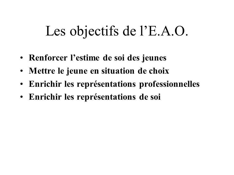 Les objectifs de lE.A.O.