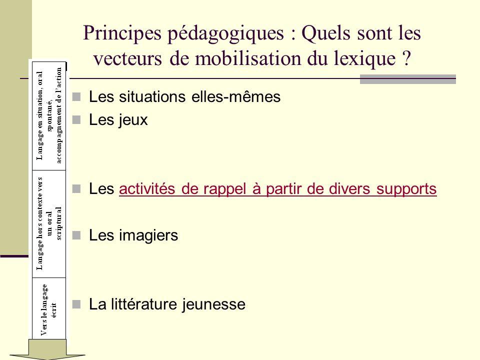 Principes pédagogiques : Quels sont les vecteurs de mobilisation du lexique ? Les situations elles-mêmes Les jeux Les activités de rappel à partir de