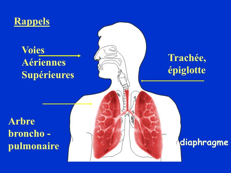 Rappels SPO2 : Saturation périphérique en O2 PaO2 : Pression artérielle en O2 90 -100 mmHg PaCO2 : Pression artérielle en CO2 40 mmHg PO2: Pression en O2 au niveau pulmonaire PCO2: Pression en CO2 au niveau pulmonaire