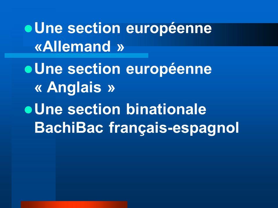Une section européenne «Allemand » Une section européenne « Anglais » Une section binationale BachiBac français-espagnol