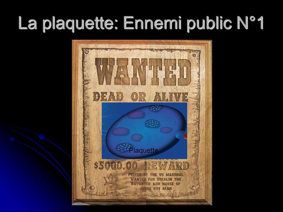 La plaquette: Ennemi public N°1 Plaquette