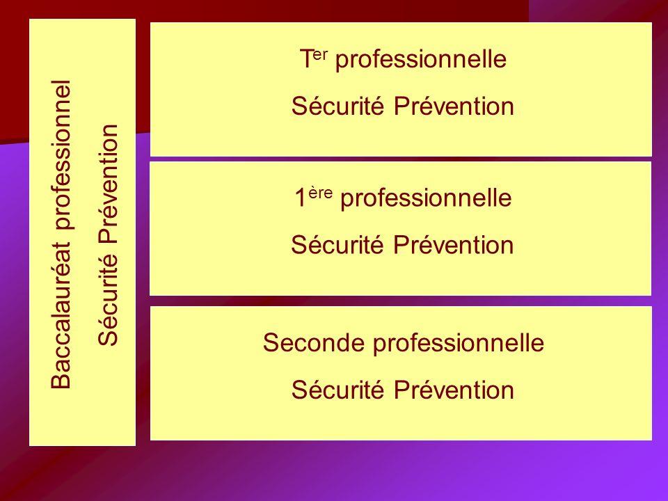 Seconde professionnelle Sécurité Prévention 1 ère professionnelle Sécurité Prévention T er professionnelle Sécurité Prévention Baccalauréat professionnel Sécurité Prévention