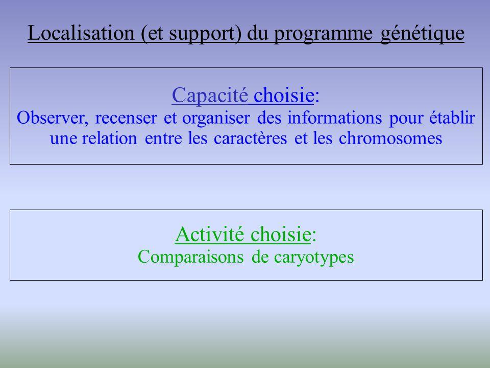 Capacité choisie: Observer, recenser et organiser des informations pour établir une relation entre les caractères et les chromosomes Activité choisie: Comparaisons de caryotypes Localisation (et support) du programme génétique