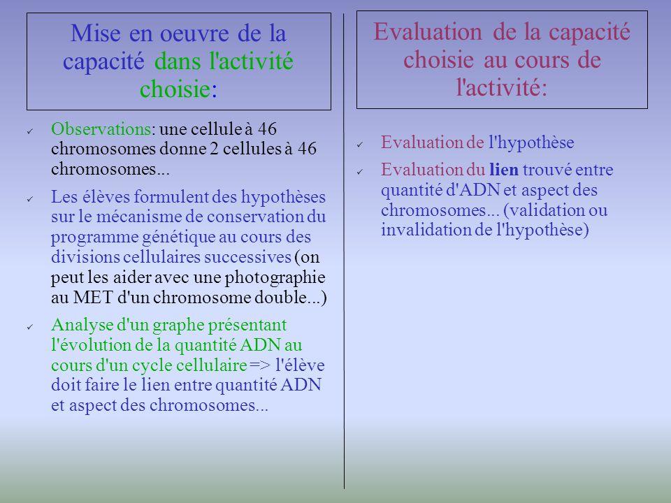 Observations: une cellule à 46 chromosomes donne 2 cellules à 46 chromosomes...