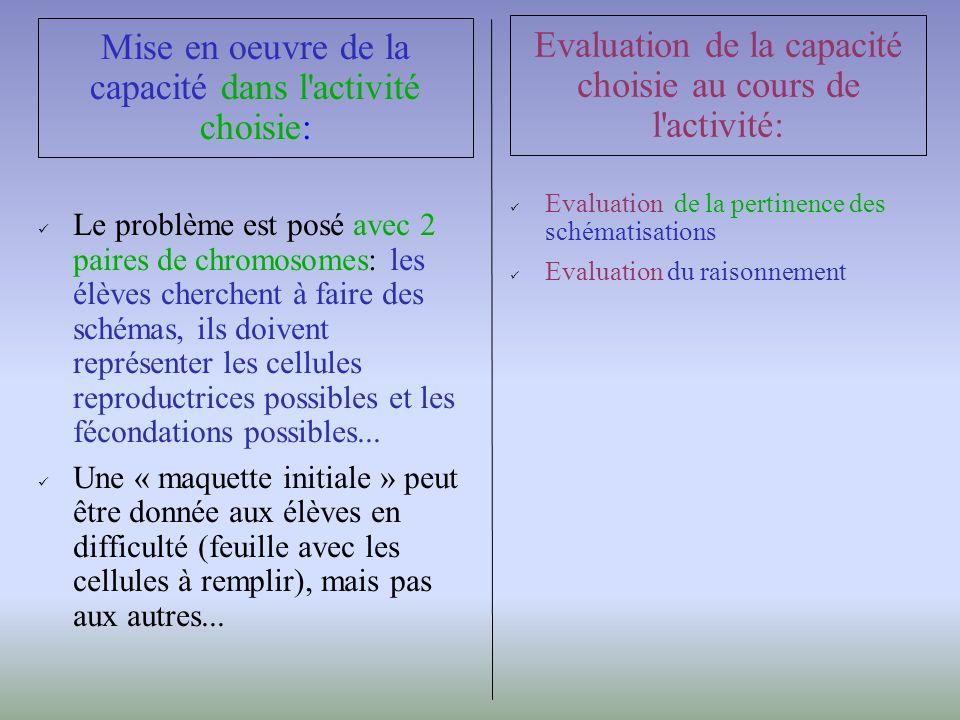 Le problème est posé avec 2 paires de chromosomes: les élèves cherchent à faire des schémas, ils doivent représenter les cellules reproductrices possibles et les fécondations possibles...