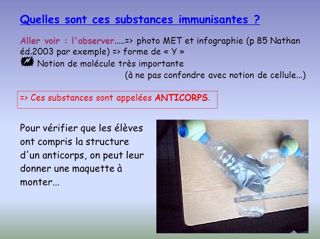Aller voir : l observer.....=> photo MET et infographie (p 85 Nathan éd.2003 par exemple) => forme de « Y » Notion de molécule très importante (à ne pas confondre avec notion de cellule...) Quelles sont ces substances immunisantes .
