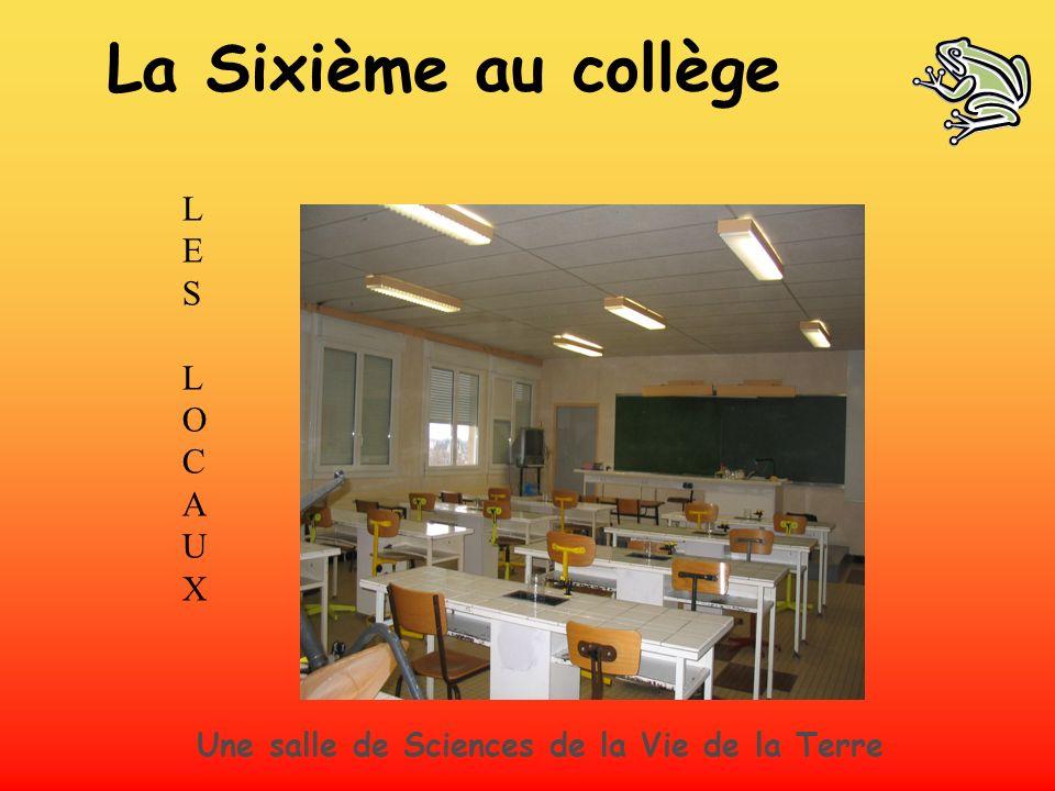 LES LOCAUXLES LOCAUX Une salle de Sciences de la Vie de la Terre La Sixième au collège