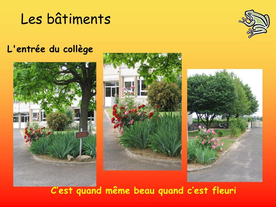 Les bâtiments L'entrée du collège Cest quand même beau quand cest fleuri