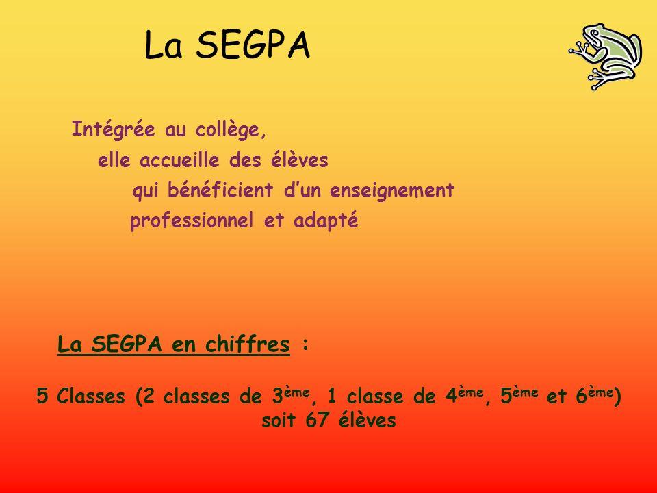 Intégrée au collège, elle accueille des élèves qui bénéficient dun enseignement professionnel et adapté 5 Classes (2 classes de 3 ème, 1 classe de 4 è