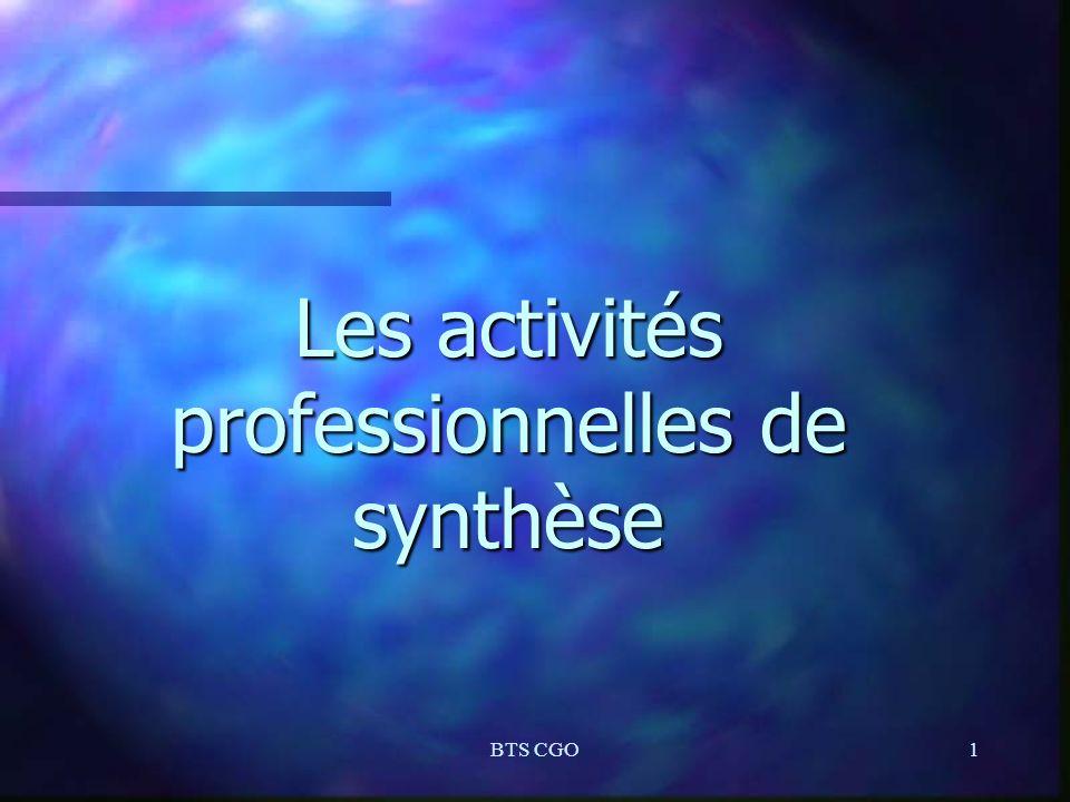 BTS CGO1 Les activités professionnelles de synthèse