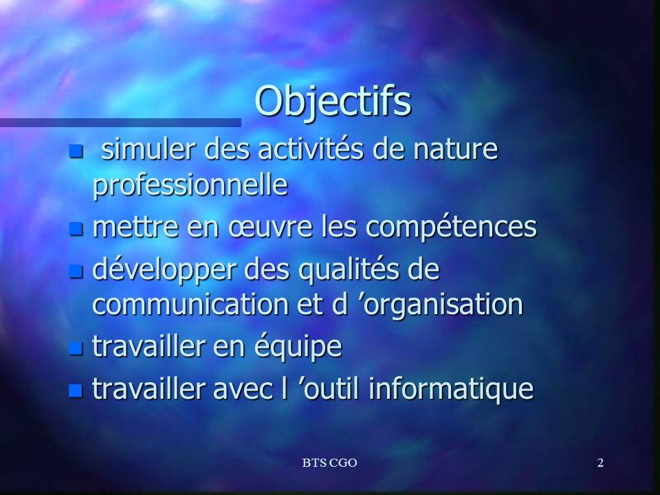 BTS CGO2 Objectifs n simuler des activités de nature professionnelle n mettre en œuvre les compétences n développer des qualités de communication et d