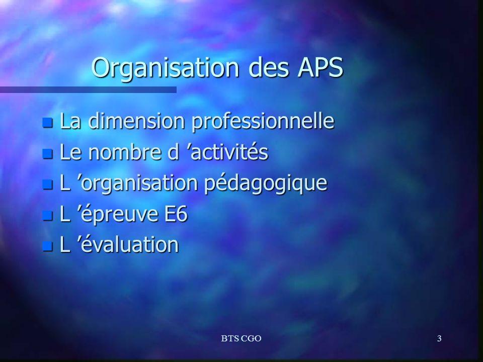 BTS CGO3 Organisation des APS n La dimension professionnelle n Le nombre d activités n L organisation pédagogique n L épreuve E6 n L évaluation