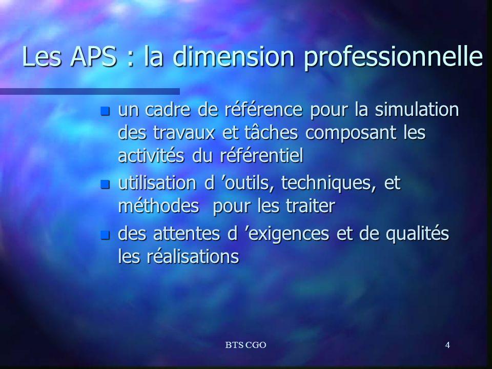 BTS CGO4 Les APS : la dimension professionnelle n un cadre de référence pour la simulation des travaux et tâches composant les activités du référentie