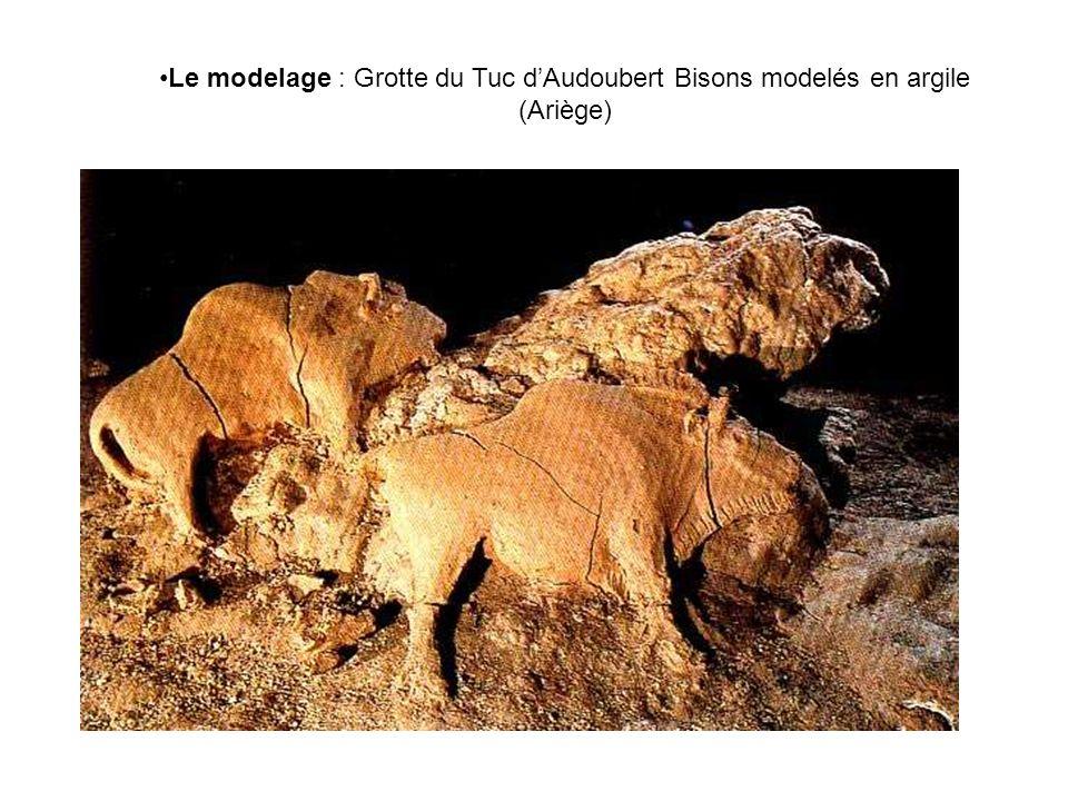 Le modelage : Grotte du Tuc dAudoubert Bisons modelés en argile (Ariège)