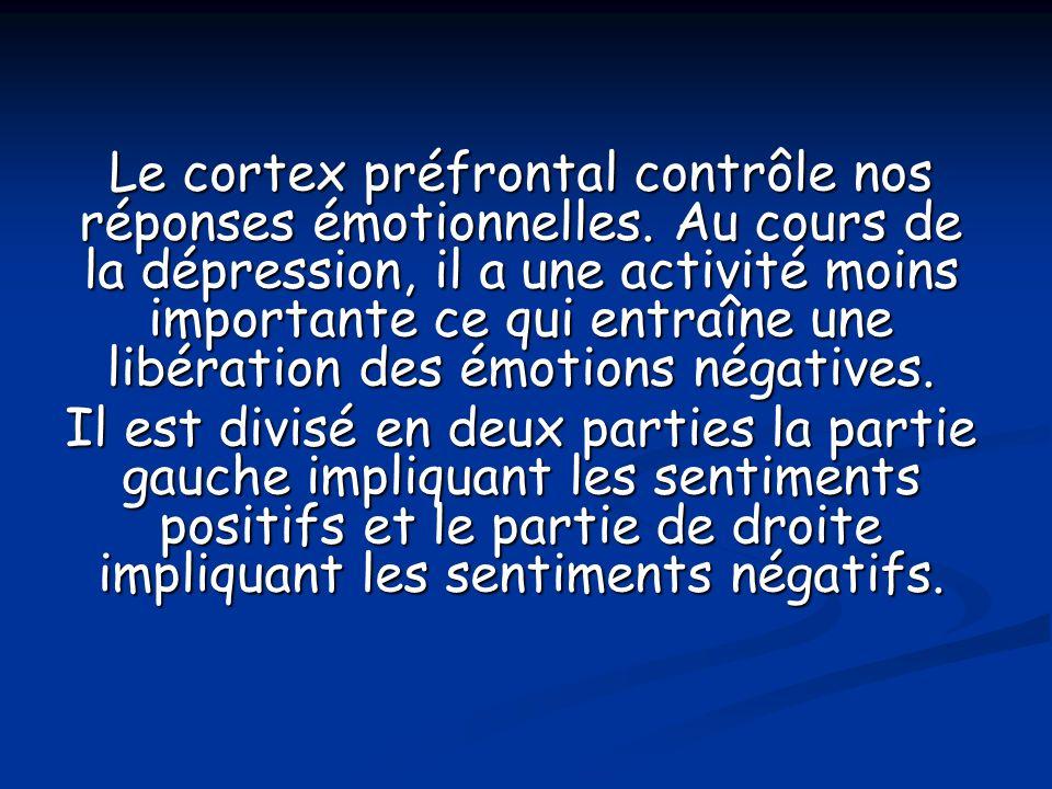 Le cortex préfrontal contrôle nos réponses émotionnelles. Au cours de la dépression, il a une activité moins importante ce qui entraîne une libération