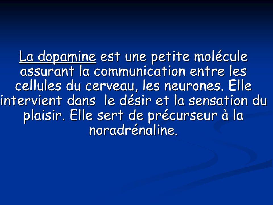 La dopamine est une petite molécule assurant la communication entre les cellules du cerveau, les neurones. Elle intervient dans le désir et la sensati