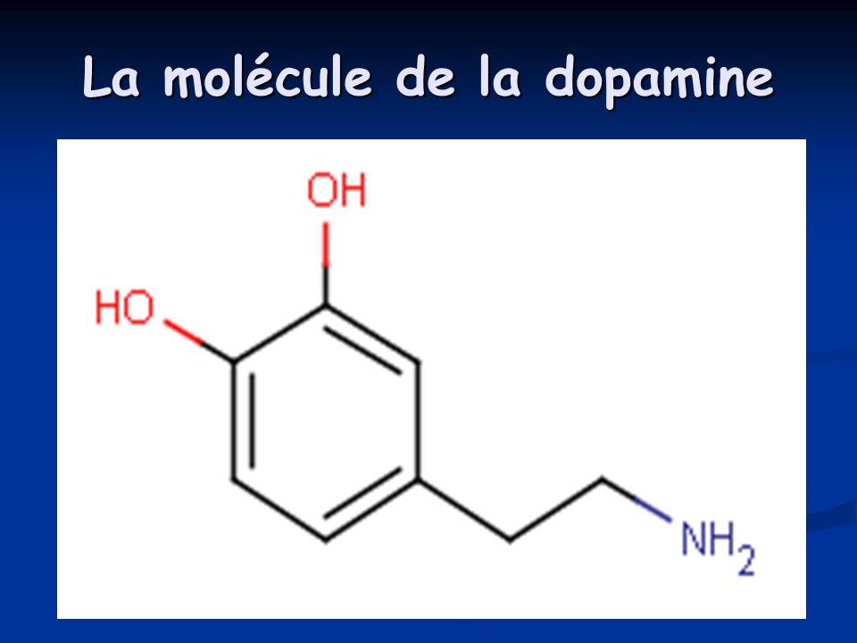 La molécule de la dopamine