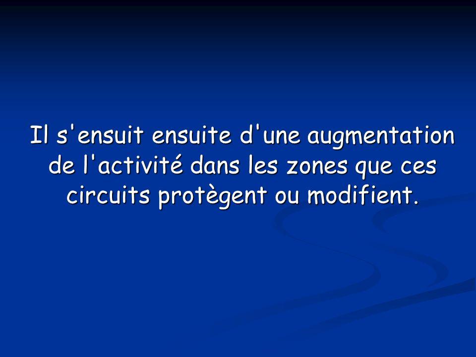 Il s'ensuit ensuite d'une augmentation de l'activité dans les zones que ces circuits protègent ou modifient.