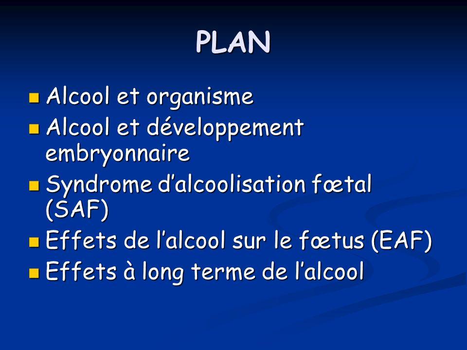 PLAN Alcool et organisme Alcool et organisme Alcool et développement embryonnaire Alcool et développement embryonnaire Syndrome dalcoolisation fœtal (