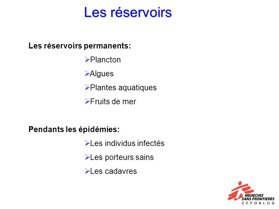 Les réservoirs Les réservoirs permanents: Plancton Algues Plantes aquatiques Fruits de mer Pendants les épidémies: Les individus infectés Les porteurs