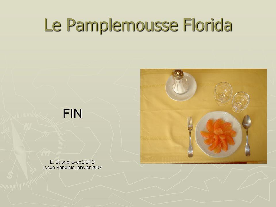Le Pamplemousse Florida FIN E. Busnel avec 2 BH2 Lycée Rabelais, janvier 2007