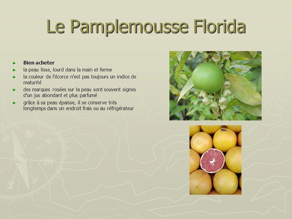 Le Pamplemousse Florida Pelez le pamplemousse à vif, Pelez le pamplemousse à vif,