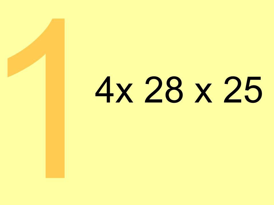 4x 28 x 25