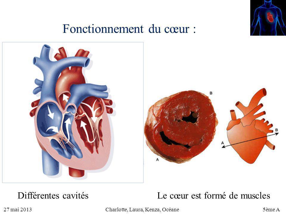 27 mai 20135ème ACharlotte, Laura, Kenza, Océane Fonctionnement du cœur : Différentes cavitésLe cœur est formé de muscles
