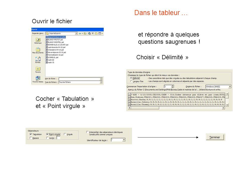 Dans le tableur … Ouvrir le fichier et répondre à quelques questions saugrenues ! Choisir « Délimité » Cocher « Tabulation » et « Point virgule »