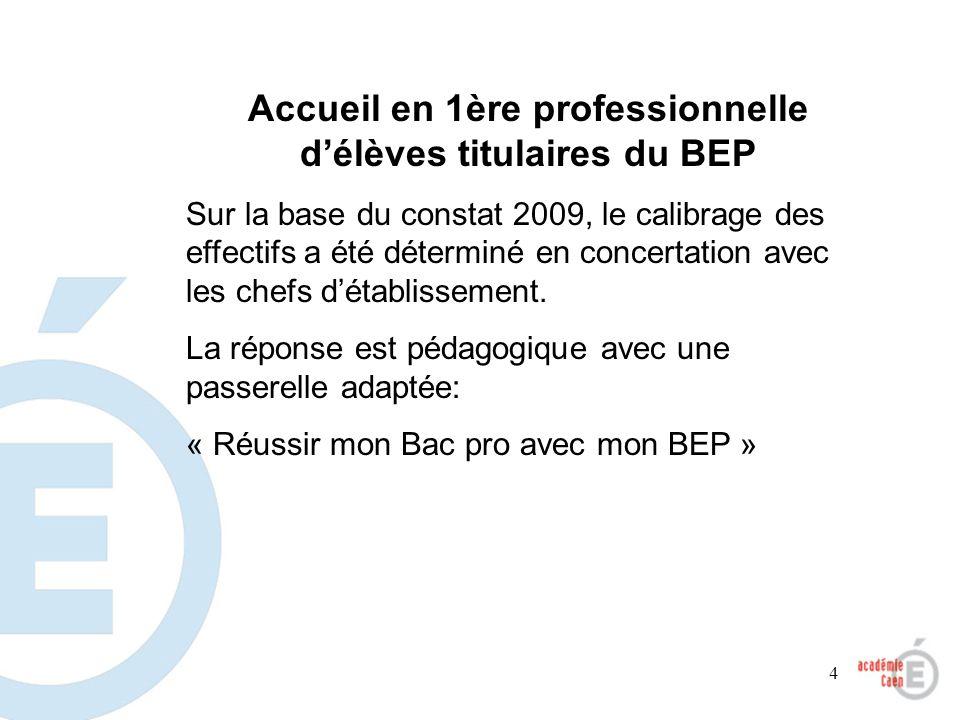 4 Accueil en 1ère professionnelle délèves titulaires du BEP Sur la base du constat 2009, le calibrage des effectifs a été déterminé en concertation av