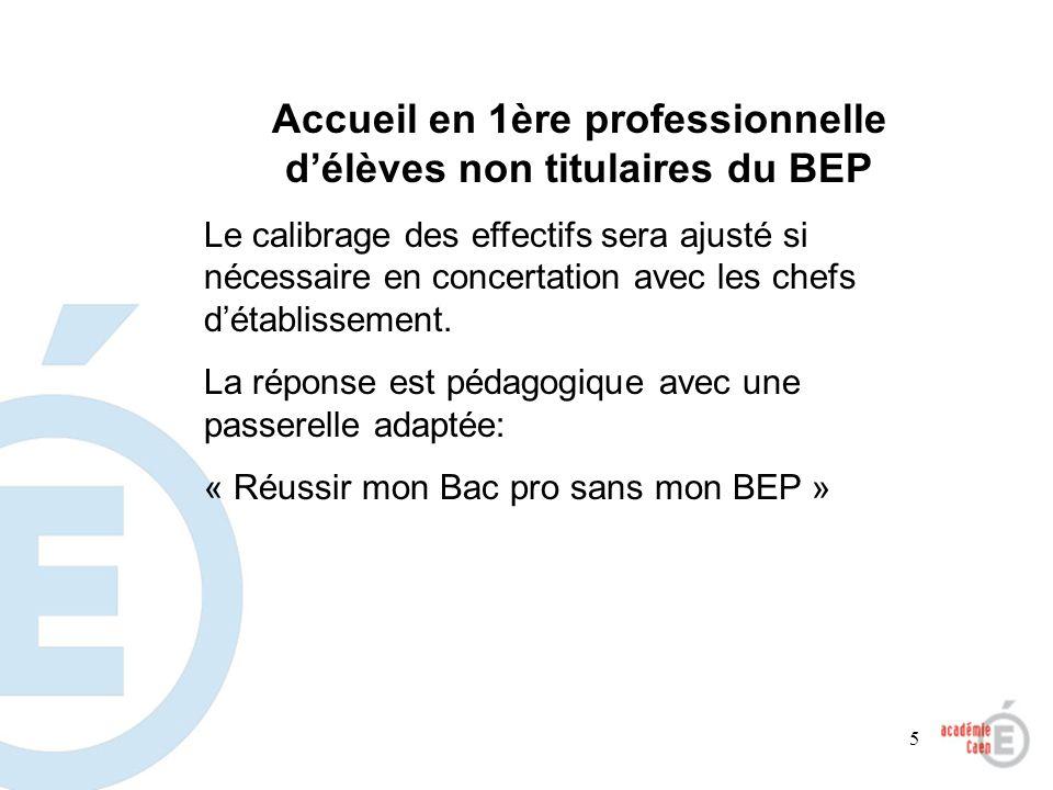 5 Accueil en 1ère professionnelle délèves non titulaires du BEP Le calibrage des effectifs sera ajusté si nécessaire en concertation avec les chefs dé
