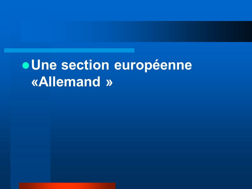 Une section européenne «Allemand »