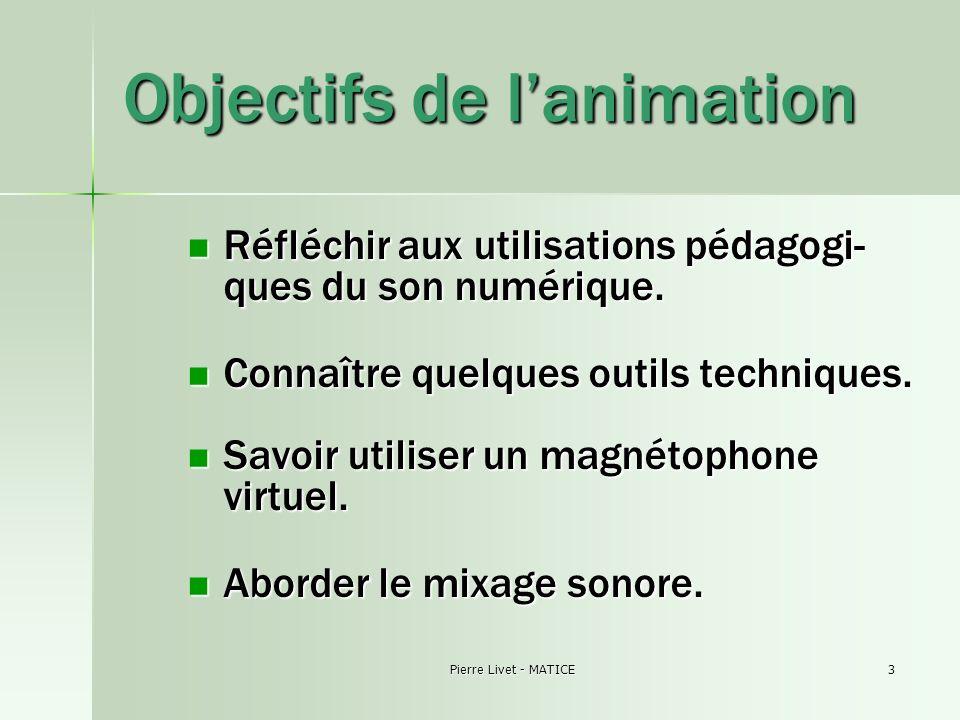 Pierre Livet - MATICE3 Objectifs de lanimation Réfléchir aux utilisations pédagogi- ques du son numérique. Réfléchir aux utilisations pédagogi- ques d