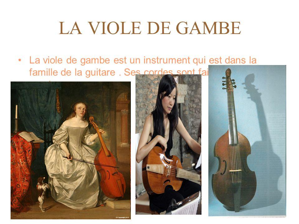 LA VIOLE DE GAMBE La viole de gambe est un instrument qui est dans la famille de la guitare. Ses cordes sont faites en boyau de mouton.
