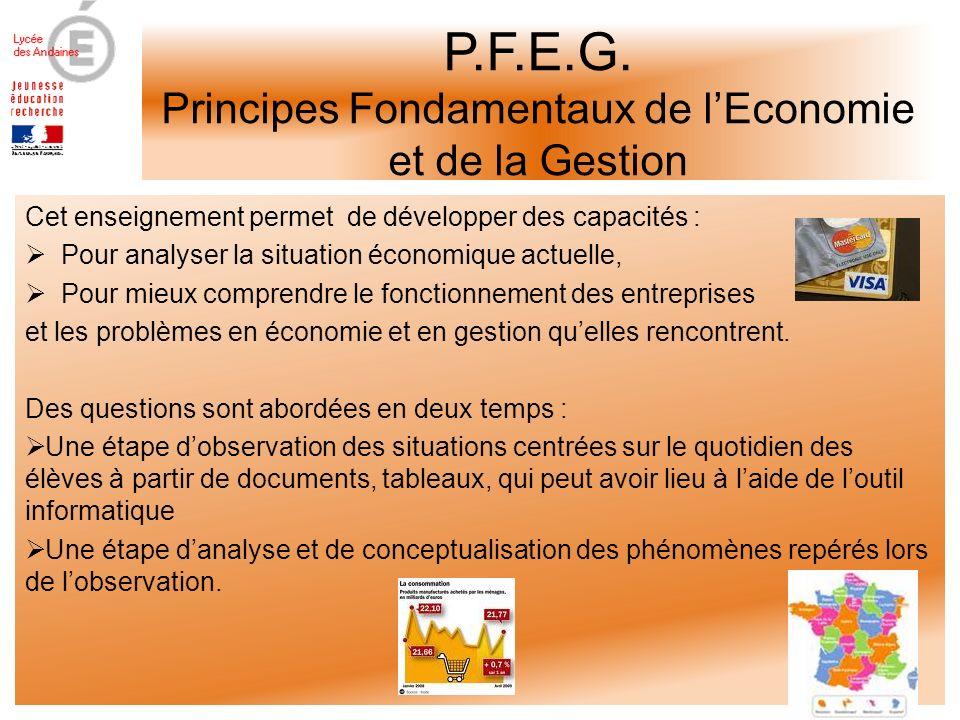 P.F.E.G.
