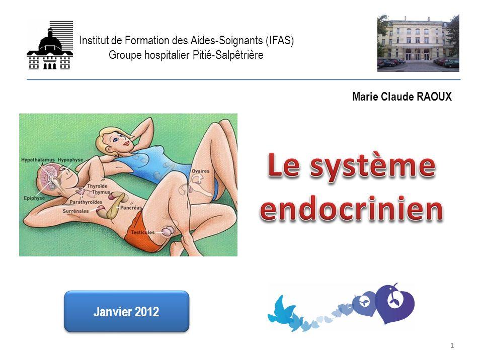 LES PRINCIPALES GLANDES ENDOCRINES Les glucocorticoïdes (suite) Ils permettent à l organisme de s adapter à l intermittence de l apport alimentaire en stabilisant la glycémie.