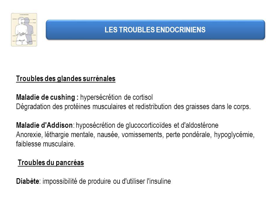 LES TROUBLES ENDOCRINIENS Troubles des glandes surrénales Maladie de cushing : hypersécrétion de cortisol Dégradation des protéines musculaires et red