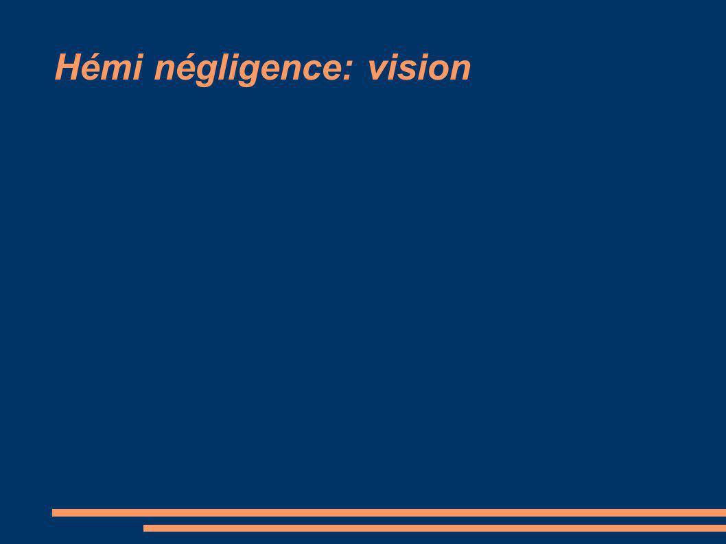 Hémi négligence: vision