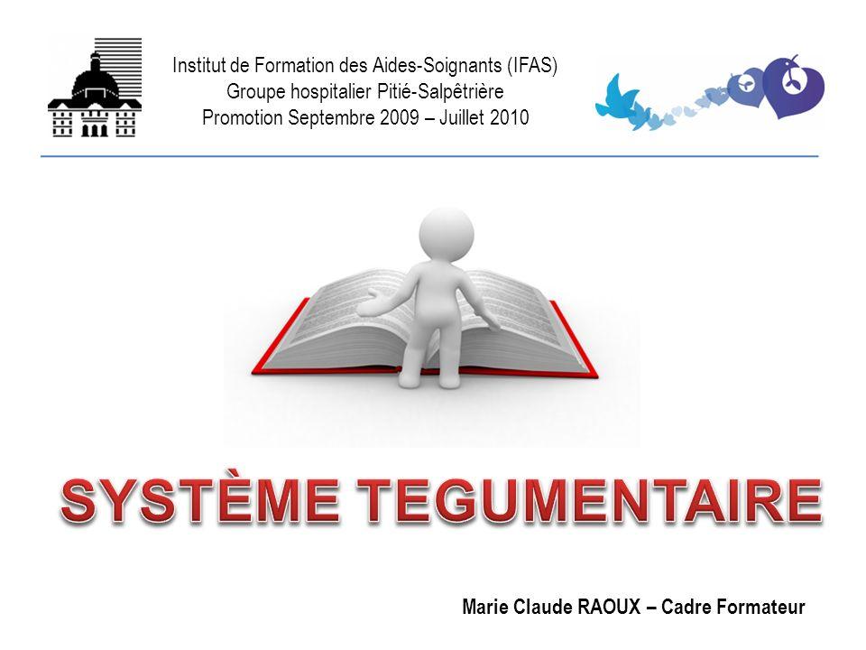 Institut de Formation des Aides-Soignants (IFAS) Groupe hospitalier Pitié-Salpêtrière Promotion Septembre 2009 – Juillet 2010 Marie Claude RAOUX – Cad